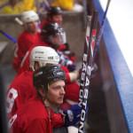 Hockey anyone?